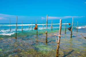 Srilankeense vissers