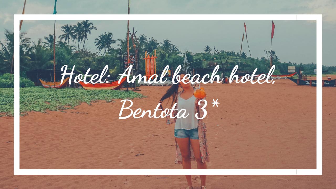 Blog Amal beach hotel