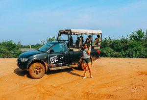 A break from the safari