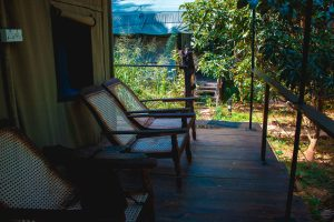 Terrace of the experience Gaga Bees Udawalawe