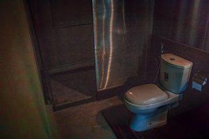 Gaga bees udawalawe shower bathroom