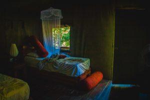 Gaga Bees udawalawe tent, glamping experience