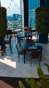 rooftop city garden
