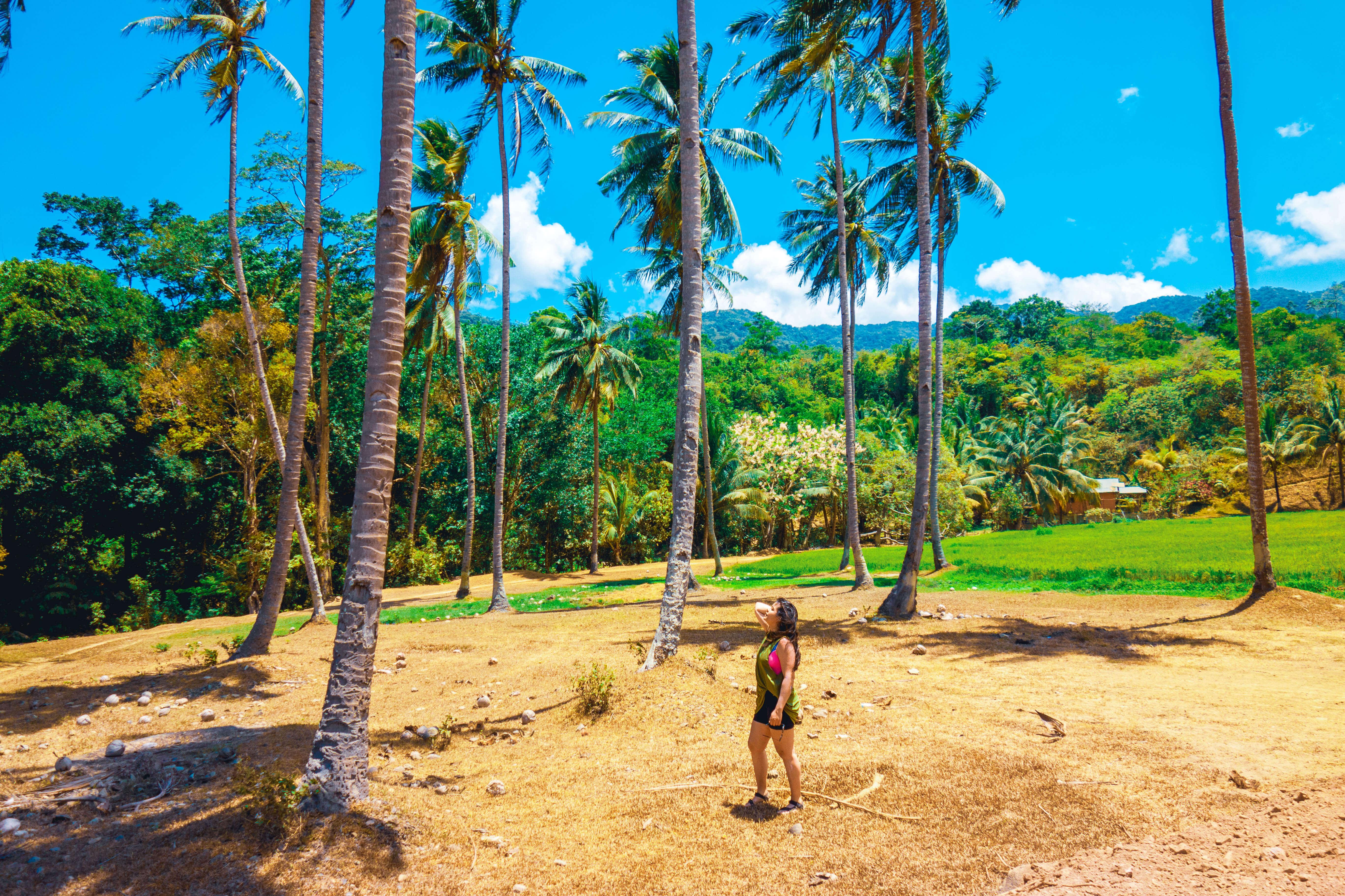 Views towards Bulalacao Fall